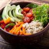 Dragon Game Studio - Ultimate Vegan Diet artwork