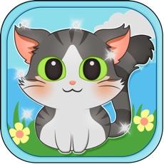 Activities of Live Cat