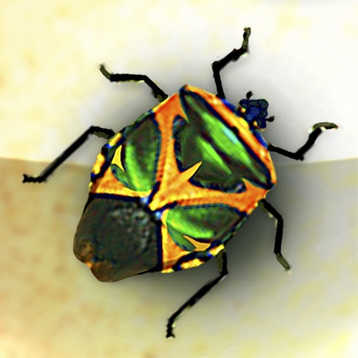 The Ancient Maya Bug Destroyer