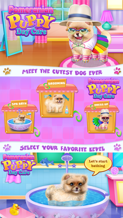 Pomeranian Puppy Day Care Screenshot