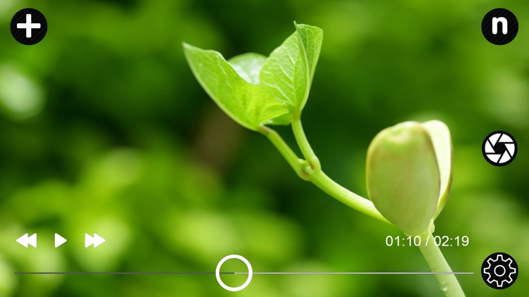 Video To Photo Plus screenshot-5