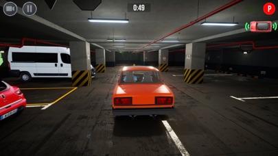 Valet Parking ! screenshot 5