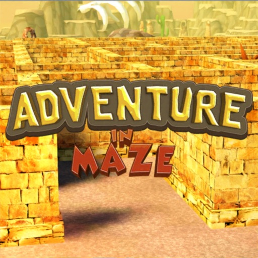 Adventure in Maze