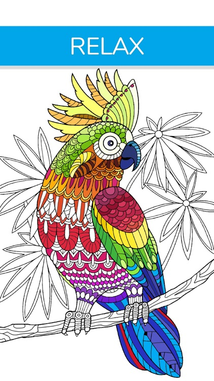 Adult Coloring Book | Animals