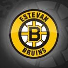 Estevan Bruins Official App icon