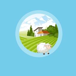 Quiz Farm