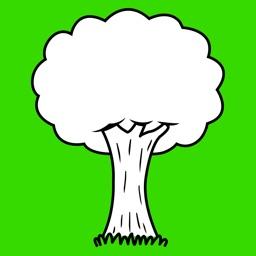 Tree Media Feed