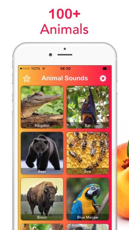 2018 Animal Sounds: Zoo, Growl
