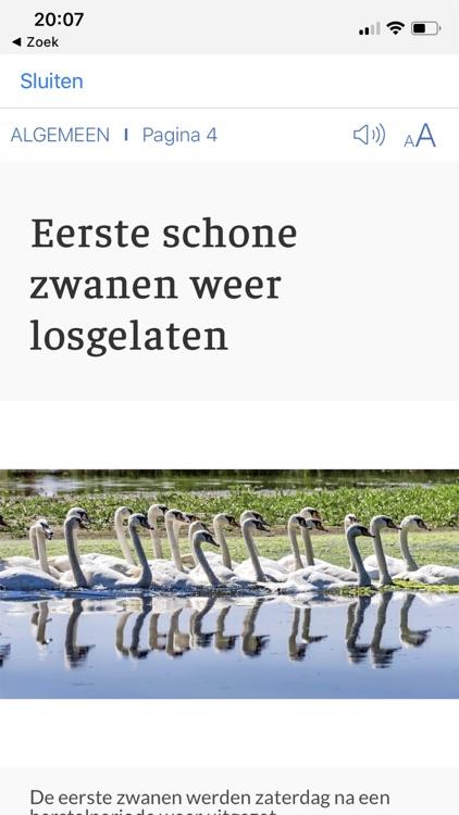 IJmuider Courant - krant