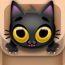 Activities of Kitty Jump!!