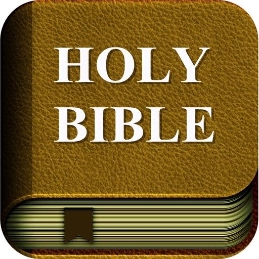 圣经和合本文字版