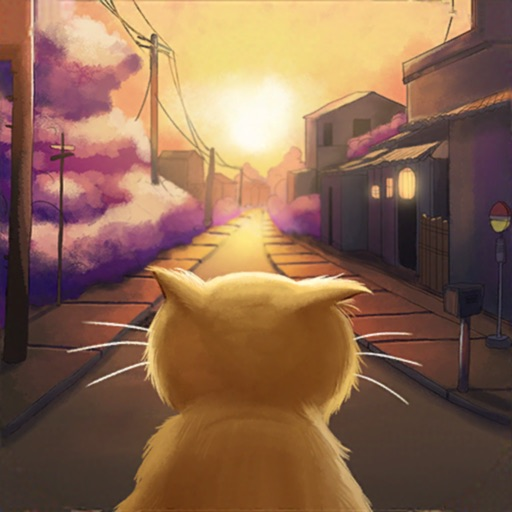побег из тюрьмы:оранжевый кот