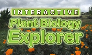 Interactive Plant Biology Explorer