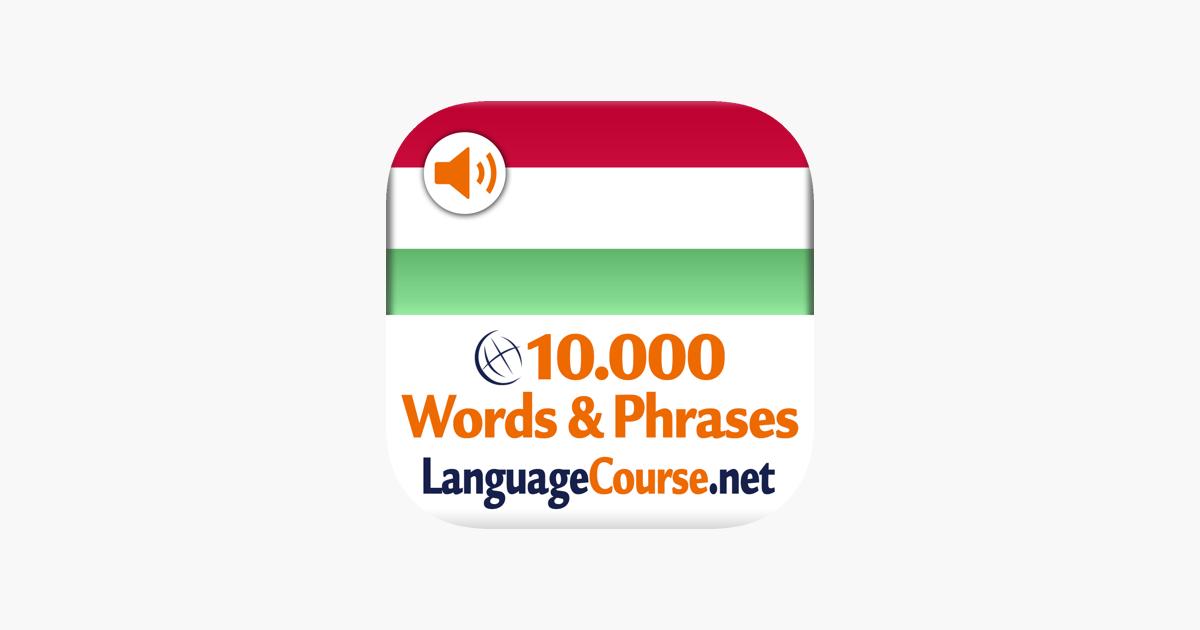 Hongaarse taalcursus online dating