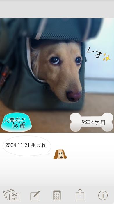 ワンコいくつ?愛犬の年齢を計算して写真で保存!スクリーンショット1