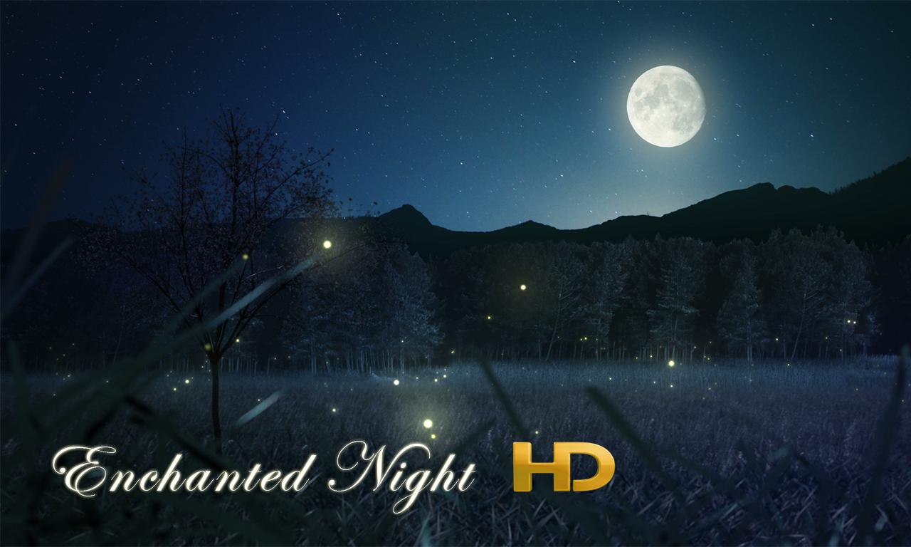 Enchanted Night HD