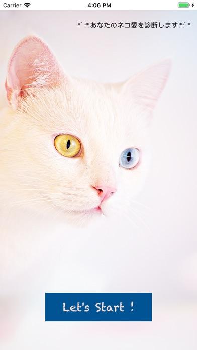 猫好き診断 screenshot 1