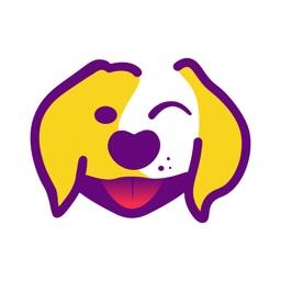 DreamDog: Find Your Dream Dog!