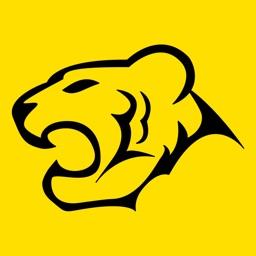 TigerWit - 外汇投资交易平台