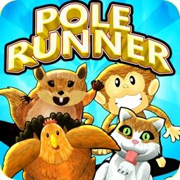Pole Runner-Tap Endless Arcade