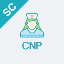 CNP Test Prep 2018