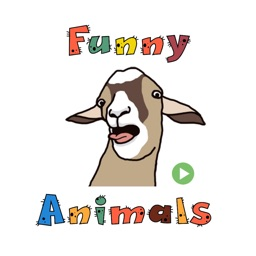 Funny Animals Animated