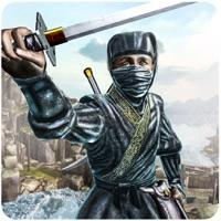 Codes for Ninja Warrior Hero Hack