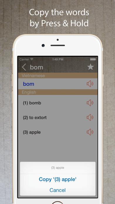 Vietnamese English Dictionary* screenshot four