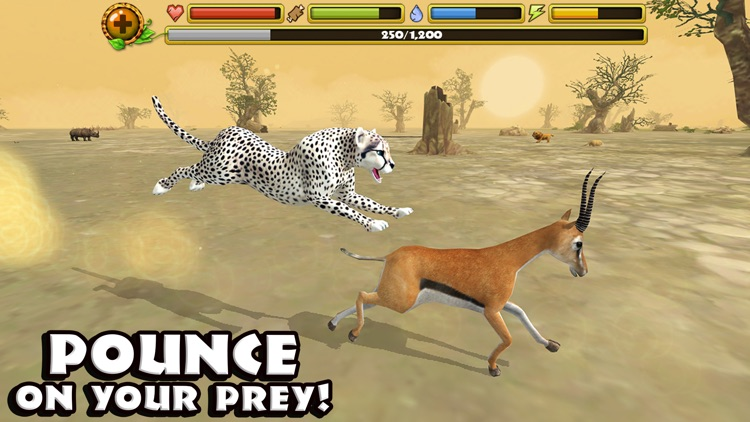 Cheetah Simulator screenshot-2