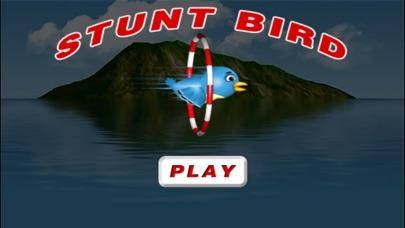 Bird Stunt Adventure