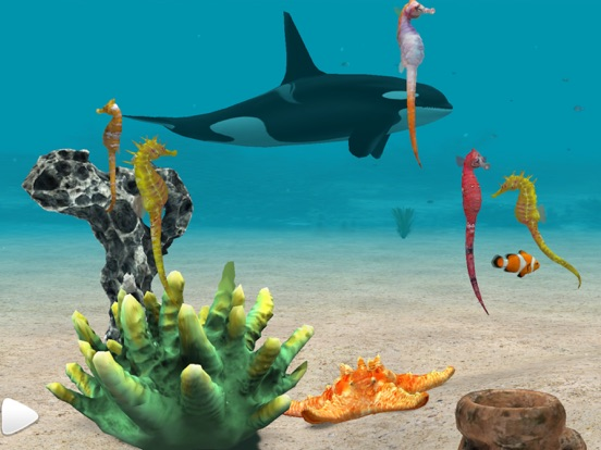 Seahorse 3D screenshot