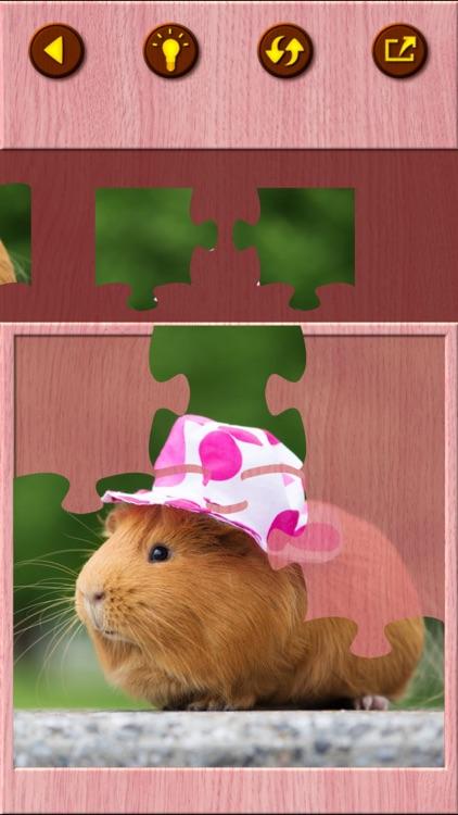 Guinea Pig Jigsaw Puzzle Games screenshot-5