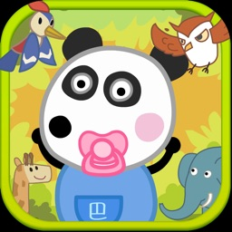 Panda Learning Animals