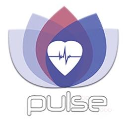 Pulse Program