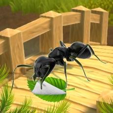 Activities of Ant Survival Simulator