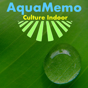 AquaMemo - Lifestyle app