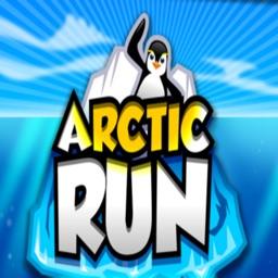 Arctic Run!