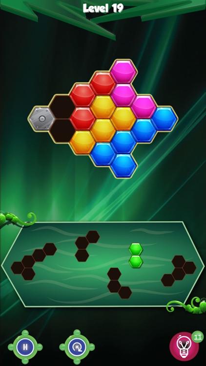 Hexagon Block Logic Puzzle screenshot-4