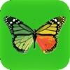 Photo Effects Studio - iPadアプリ