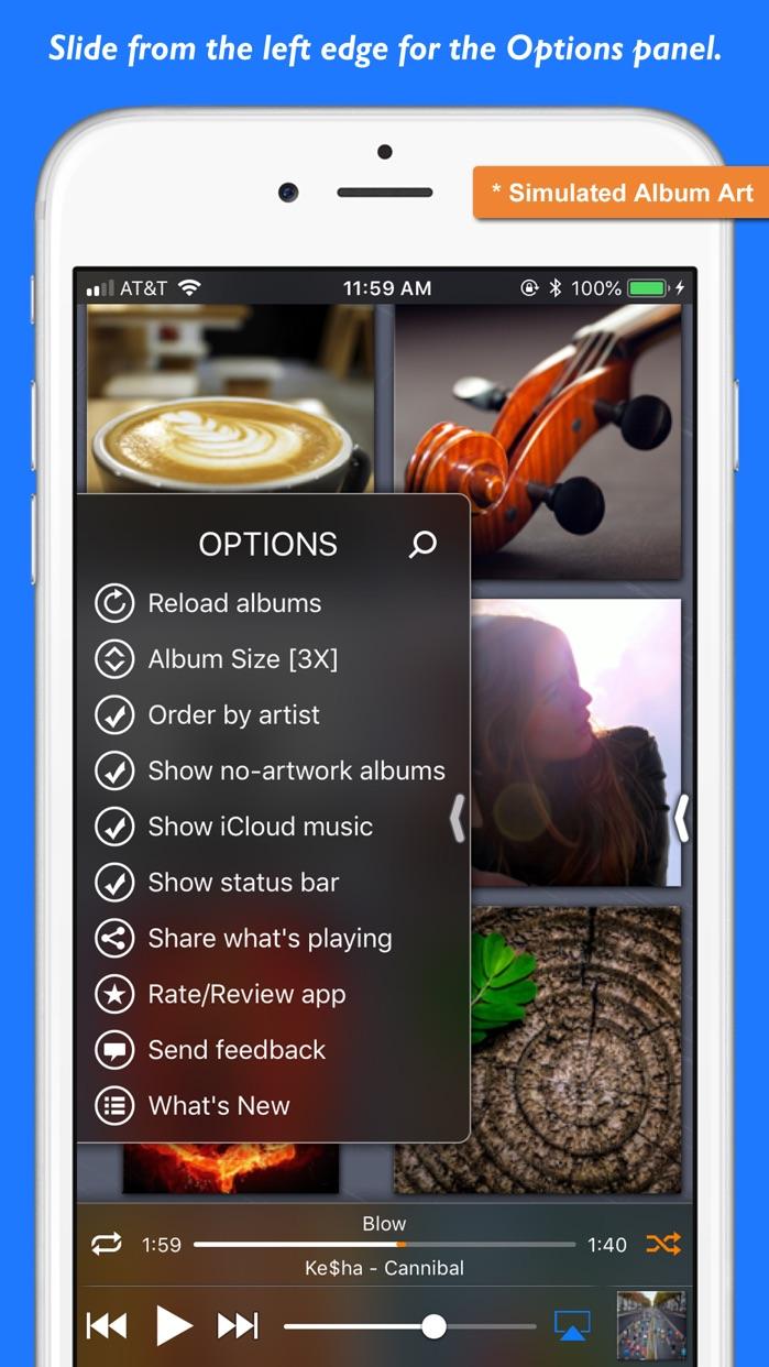 Platinum Music Album Player Screenshot