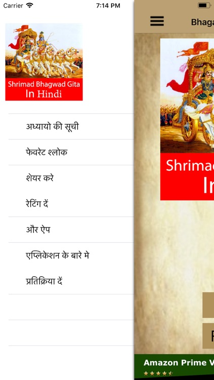 Bhagavad Geeta in Hindi screenshot-0