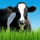 Farm Sounds by TantrumApps icon