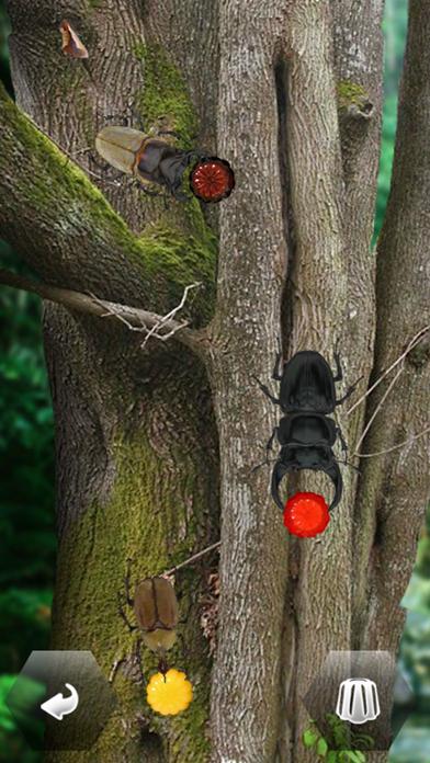 世界の昆虫採集のおすすめ画像1