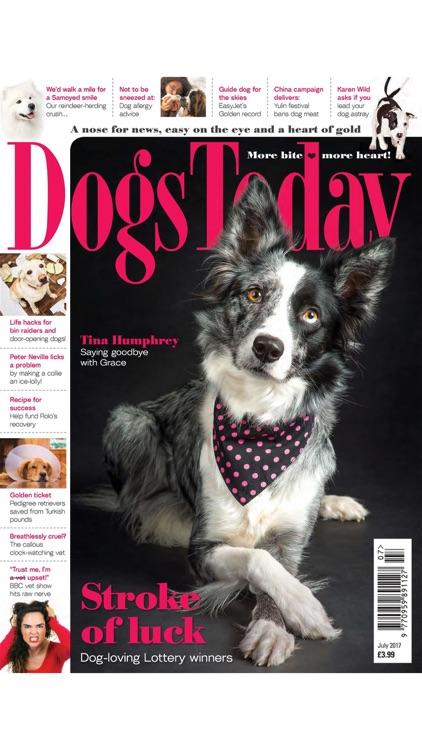 Dogs Today Magazine