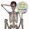 Stus Anatomy Flashcards - iPhoneアプリ