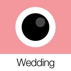 Analog Wedding