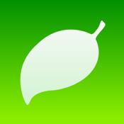 Coda app review