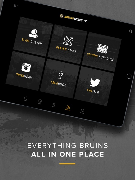 Bruins DeskSite screenshot-2