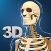 My Skeleton Anatomy