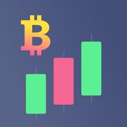 Crypto X Pro